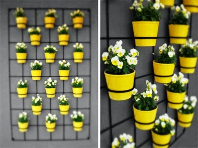 Ideas para hacer un jard n vertical rutchicote for Reja para jardin vertical