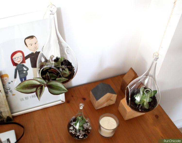 mini-jardines-verticales-de-cristal1